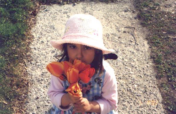 julia_flowers (73k image)